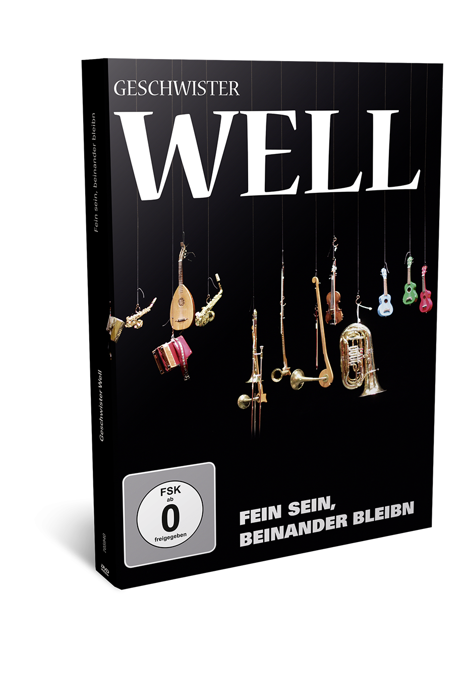 DVD Geschwister Well - fein sein beinander bleibn - Well Musik 2013